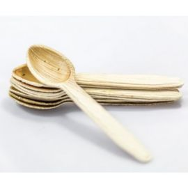 Areca Disposable Spoons