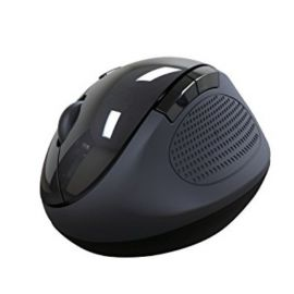 Portronics Puck Wireless Mouse With Usb 2.0 Port (Black)